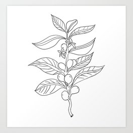 Coffee Plant Stem - Happy In Your Cup Art Print