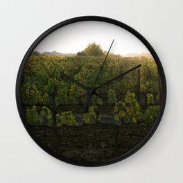 Sunset Over the Vineyard Wall Clock