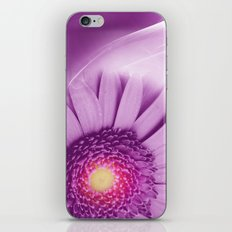Flower - Gerbera iPhone & iPod Skin