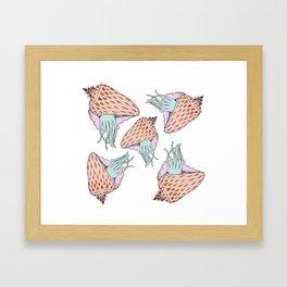 Cuttle Conch Framed Art Print