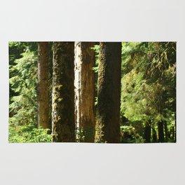 Walkway in Hoh Rainforest Rug