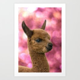 alpaca #society6 #decor #buyart Art Print
