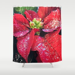 Christmas Holiday Red Poinsettias With Silver Hanukkah Sparkles Shower Curtain