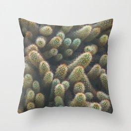 Botanical Gardens - Cactus #596 Throw Pillow