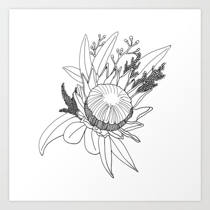 Native Australian Flower Art Print