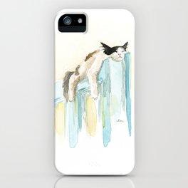 Sleep Like A Cat iPhone Case