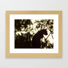 Squirrel Silhouette Framed Art Print