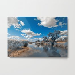 Kruger Park Landscape - Winter Blue Metal Print