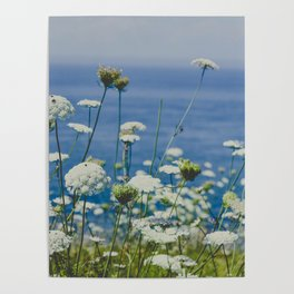 Flowers by the Beautiful Blue Sea Poster