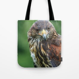 Watching like a hawk Tote Bag