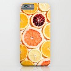 Citrus iPhone 6s Slim Case