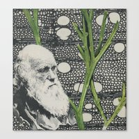 darwin Canvas Prints featuring Darwin-ing by Eleanor Boersma