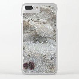 Sea Sand Clear iPhone Case