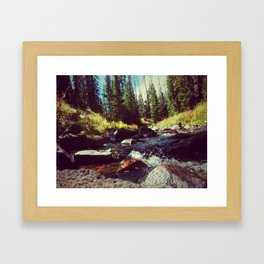 Walk on Water Framed Art Print