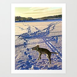 Wilma jump Art Print