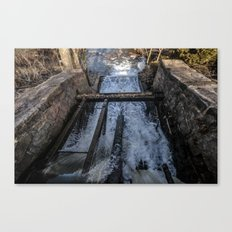 Rush(Color) Canvas Print