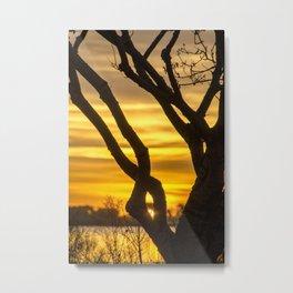 Tree Sunrise Metal Print