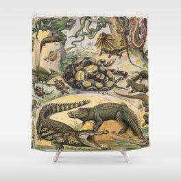 Reptiles, Nouveau Larousse Illustré Shower Curtain