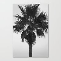 palm Canvas Prints featuring Palm by Alwayzgreener