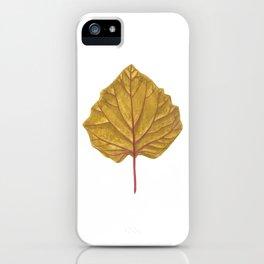 Goldenberry leaf iPhone Case