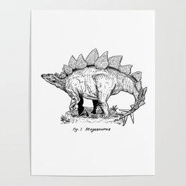 Figure One: Stegosaurus Poster
