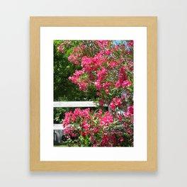 Sonoma Flowers Framed Art Print
