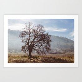 Solo Tree. Art Print