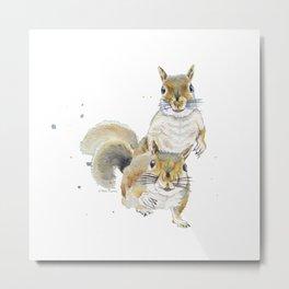 Two Squirrels Metal Print