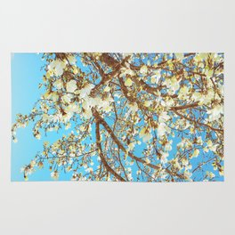 Lily magnolia in blue sky Rug