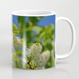 Mayday Tree in Bloom Coffee Mug