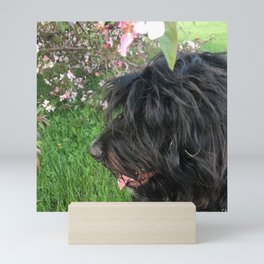 Dog and Blossoms 1 Mini Art Print