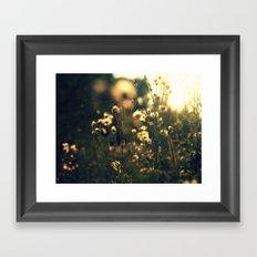 blured flowers Framed Art Print
