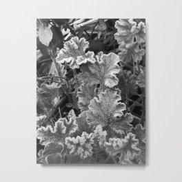 Frozen Nature - Monochrome Metal Print