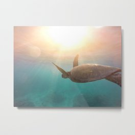 Turtle enjoying life Metal Print