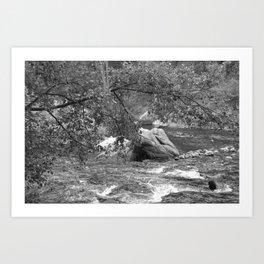Rocky Mountain Stream - M Art Print