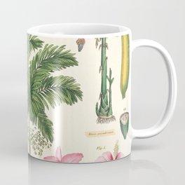 Tropical Plants Vintage Scientific Illustration Encyclopedia Labeled Diagrams Coffee Mug