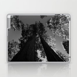 black and white staring straight up at giant sequoias Laptop & iPad Skin