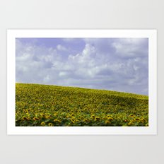 Field of Happiness - Sunflowers  Art Print