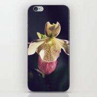 minnesota iPhone & iPod Skins featuring Minnesota Lady by Kimberley Britt