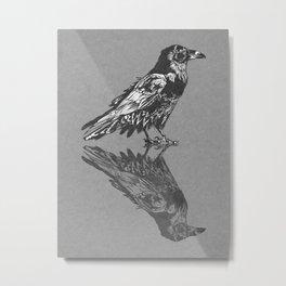 Raven Grey Metal Print
