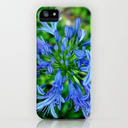 Blue Lily Of The Nile iPhone Case