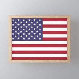 US Flag - Authentic colors Framed Mini Art Print