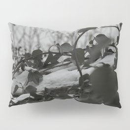 Snow covered ivy Pillow Sham