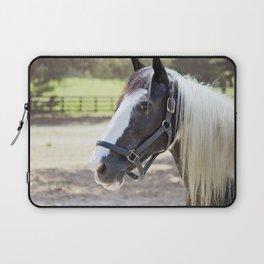 Equine Beauty Laptop Sleeve