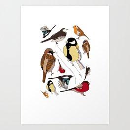 Some Birds Art Print