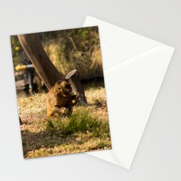 Monkey Business II Stationery Cards