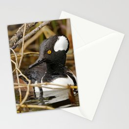 Hooded Mergser in the Wetland Stationery Cards