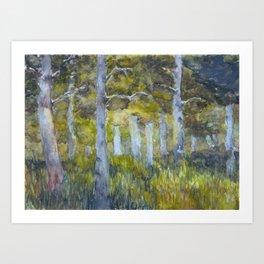 Sun Through Aspens Art Print