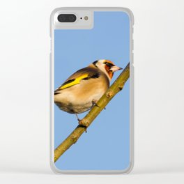 Goldfinch Clear iPhone Case