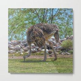 Big Bird Metal Print